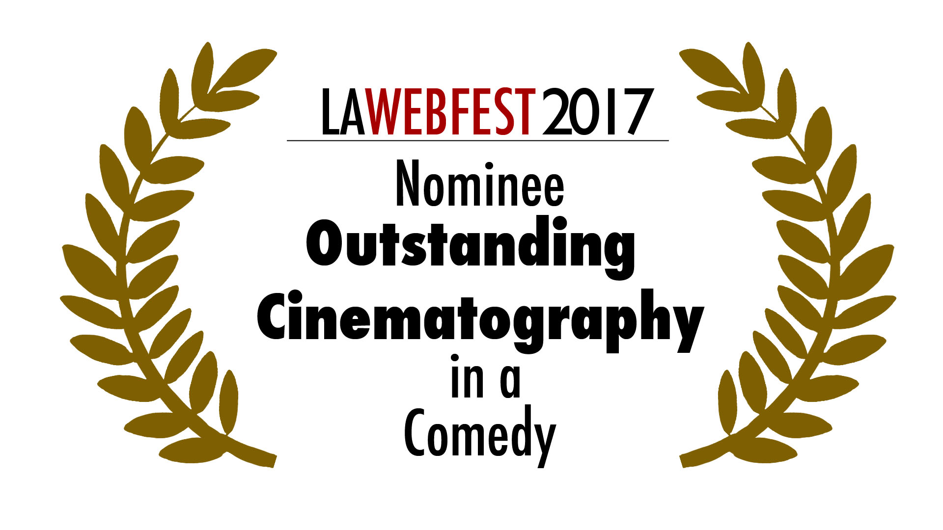 LA Webfest 2017 Cinematography nominee